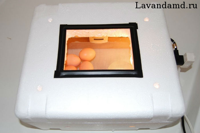 Сделать инкубатор для яиц своими руками